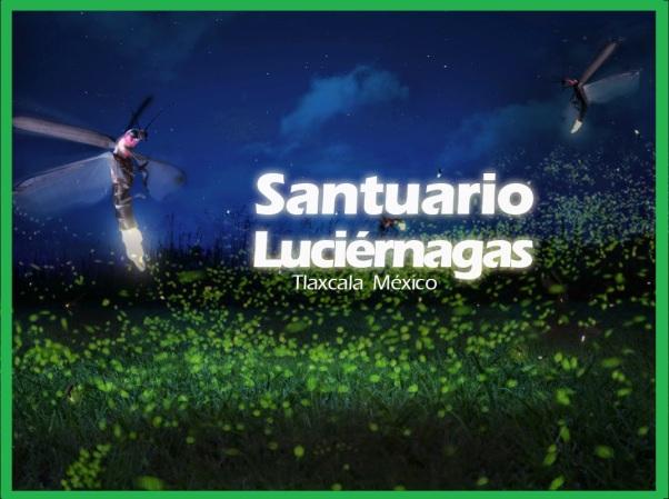tour-luciernagas-tlaxcala-nanacamilpa-lagunazul-mexico-01
